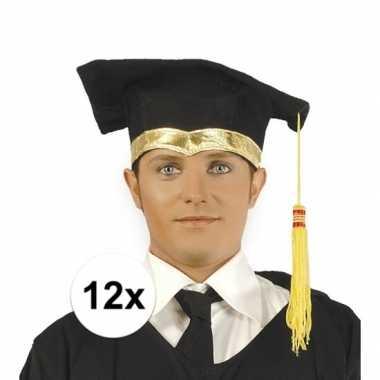 12x luxe geslaagd hoedje / geslaagd hoedje met gouden details