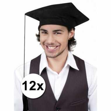 Groepsverpakking geslaagd hoedjes 12x